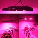 LED 100W COB taimelamp