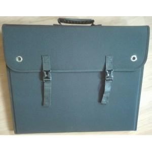 100W kantav päikesepaneel kotiga